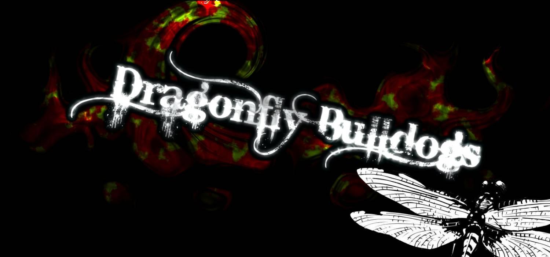 dragonflypicvonblack.jpg
